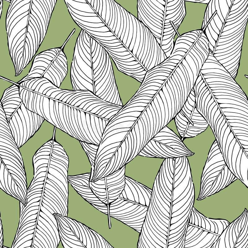 Листья безшовного конспекта картины черно-белые на зеленой предпосылке, векторе листвы, иллюстрации иллюстрация штока