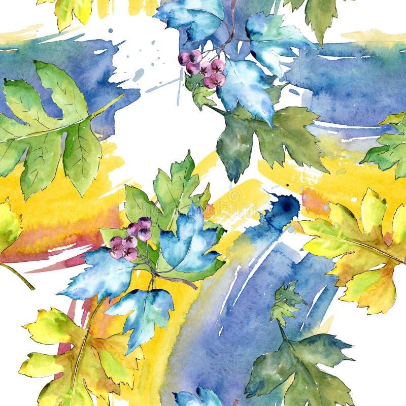 Листья боярышника акварели красочные Листва ботанического сада завода лист флористическая Безшовная картина предпосылки иллюстрация штока