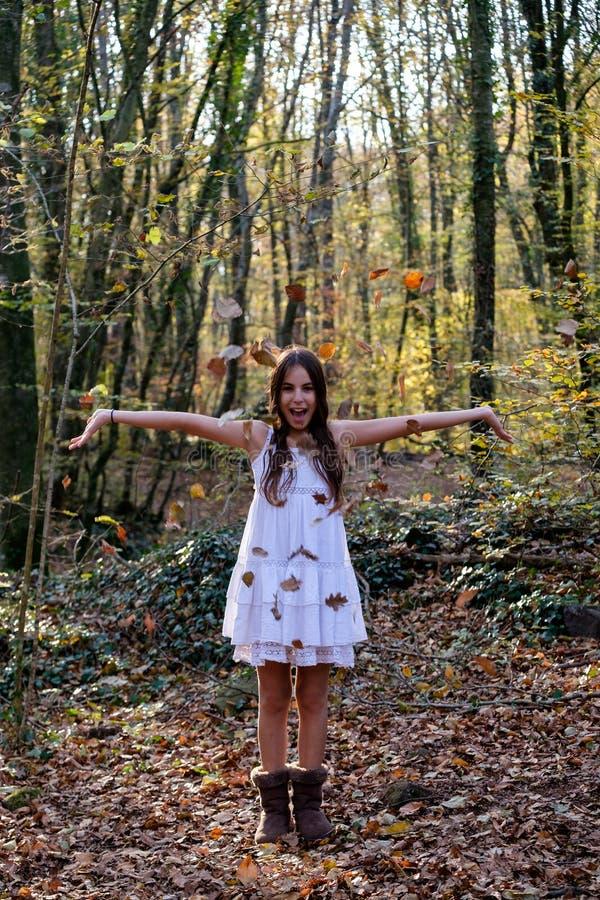 Листья бука счастливой маленькой девочки бросая стоковые фото