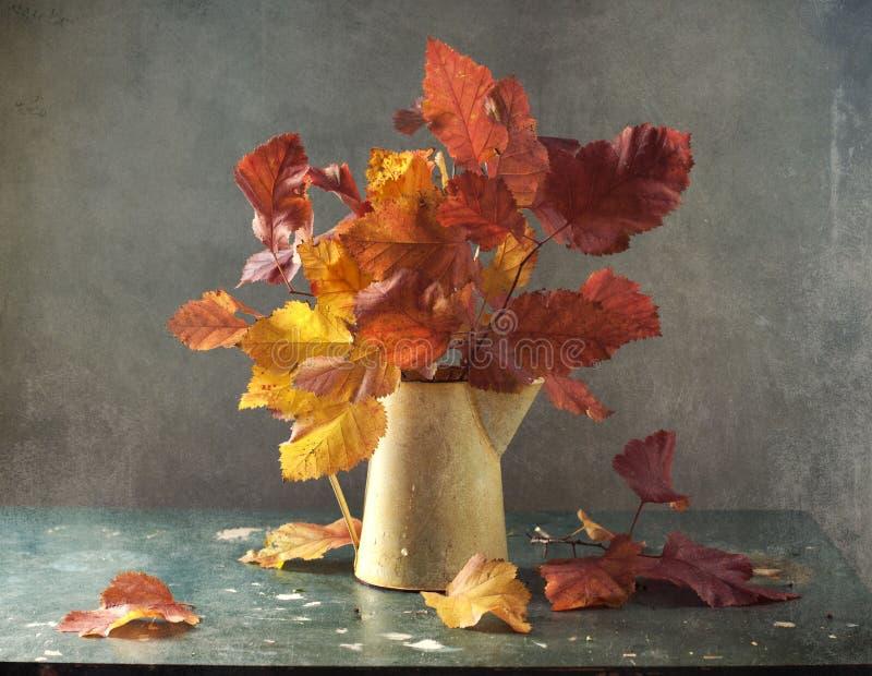 листья букета стоковое изображение rf