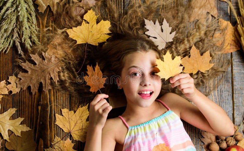 Листья владением настроения ребенка шаловливые Атрибуты отдыха сезона падения игры Игра девушки ребенк милая с предпосылкой листь стоковое изображение