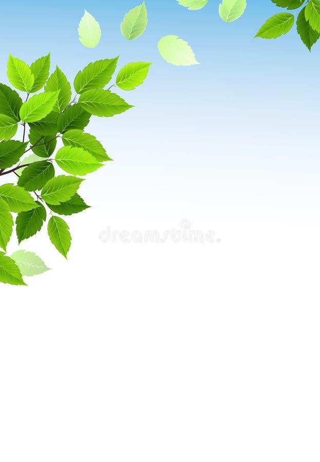 Листья зеленого цвета бесплатная иллюстрация