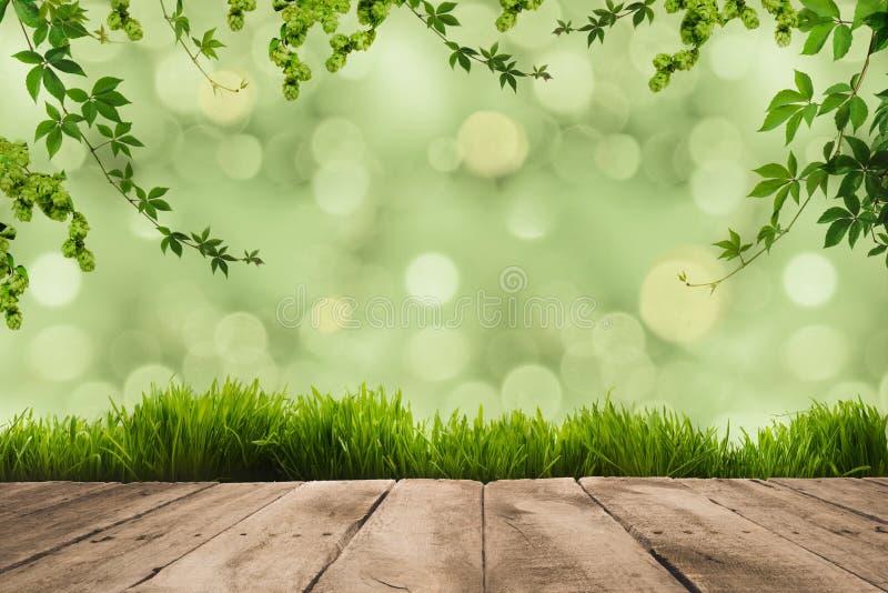 листья зеленого цвета, sward и деревянные планки стоковые фото