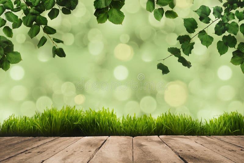 листья зеленого цвета, sward и деревянные планки стоковая фотография rf