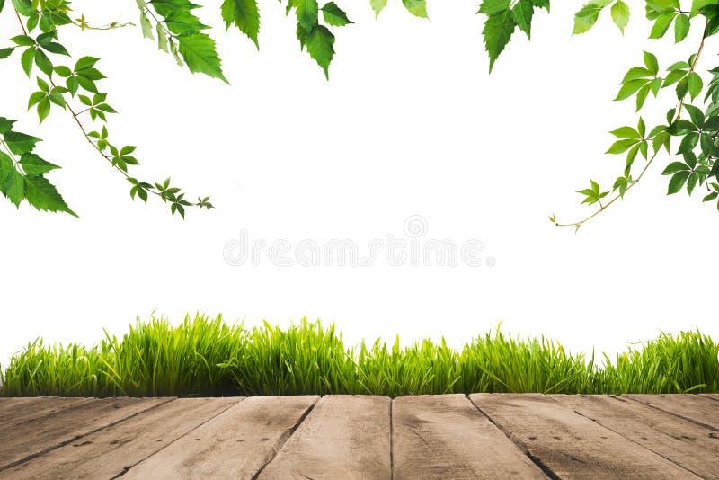листья зеленого цвета, sward и деревянные планки стоковое изображение rf