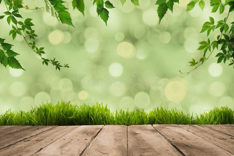 листья зеленого цвета, sward и деревянные планки стоковые изображения rf