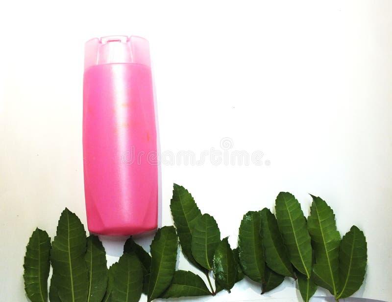 Листья известки Kaffir помогают накормить скальп и волосы стоковая фотография rf