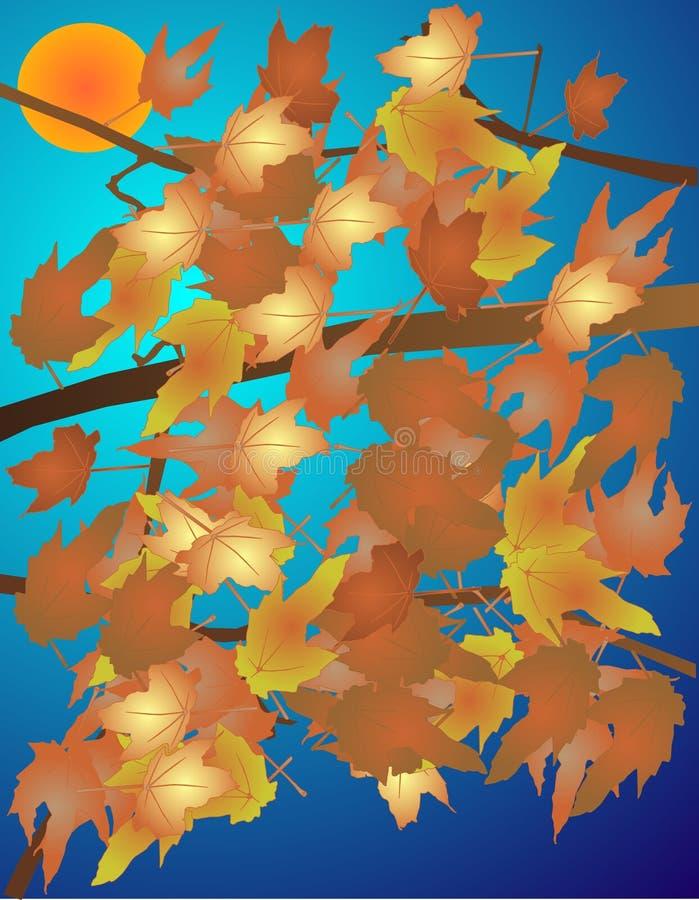 листья иллюстрации падения цвета осени иллюстрация штока