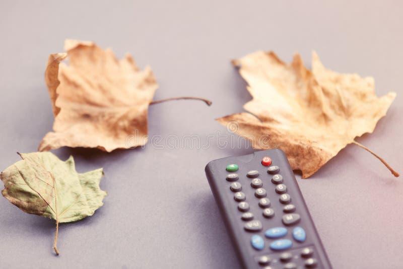 Листья дистанционного управления и осени ТВ стоковые фотографии rf