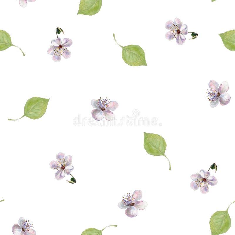 Листья и цветки акварели Флористическая безшовная картина на белой предпосылке бесплатная иллюстрация