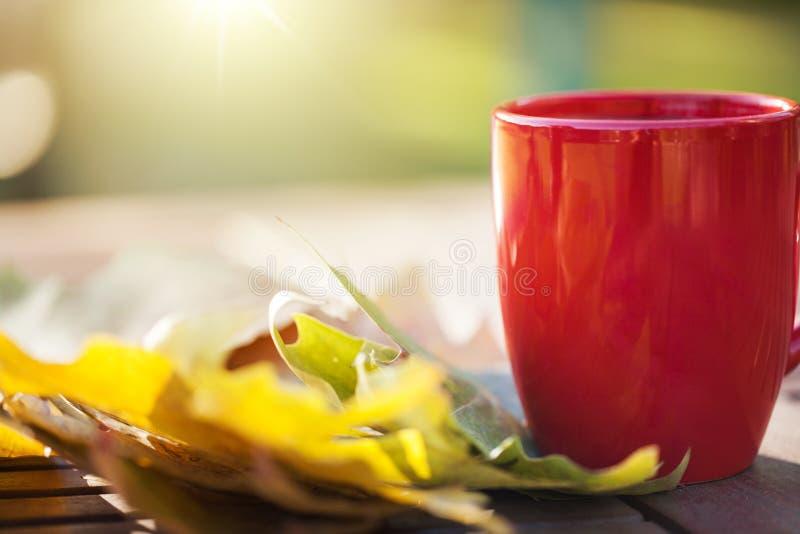 Листья и чашка осени с питьем стоковая фотография
