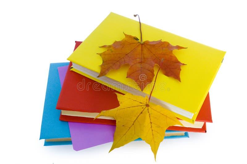 листья книг стоковое фото rf