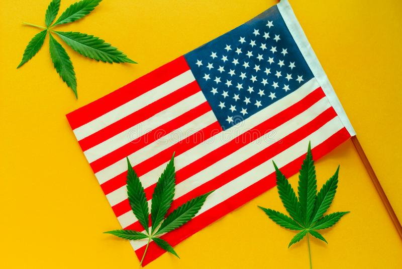 листья конопли и желтый фон американского флага стоковое изображение rf