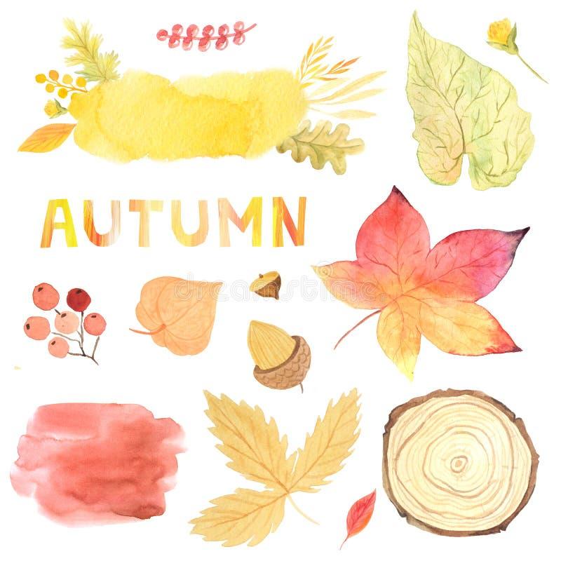 Листья осени акварели, ветви, текстуры и набор заводов стоковое фото