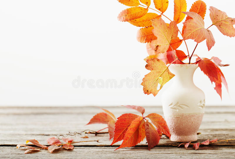 Листья осени в вазе стоковые изображения rf