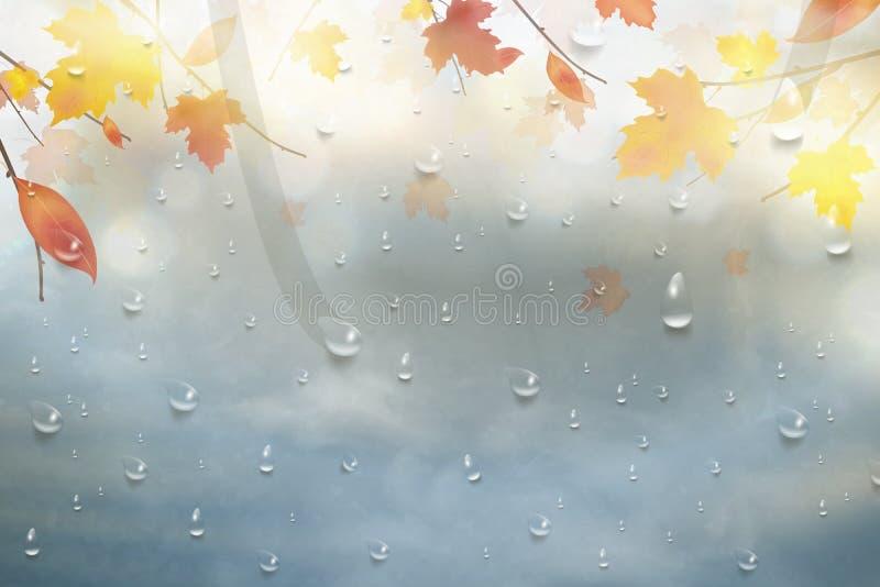 Листья осени для ненастного стекла Предпосылка осени природы с дождевыми каплями на окне, ветвью Realistiac кленовых листов autum стоковое изображение rf