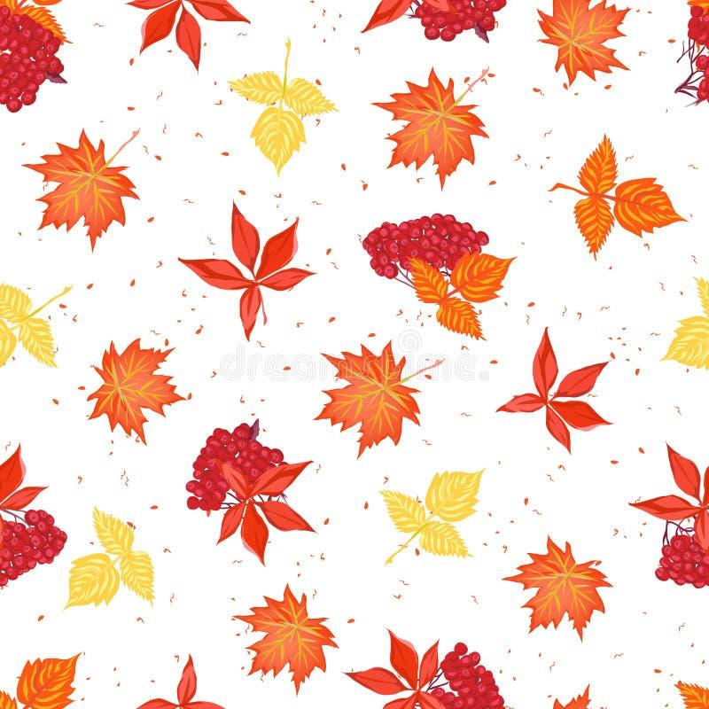 Листья осени и ashberry безшовная картина вектора бесплатная иллюстрация