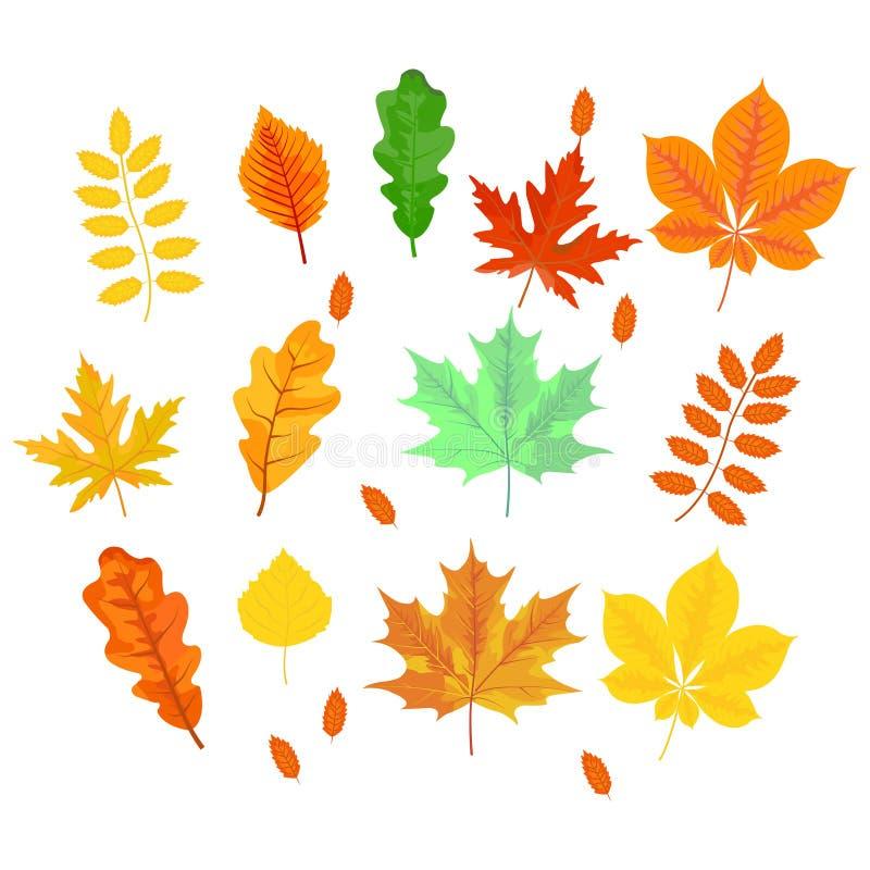Листья осени клен, дуб, береза, каштан и другие заводы  иллюстрация вектора