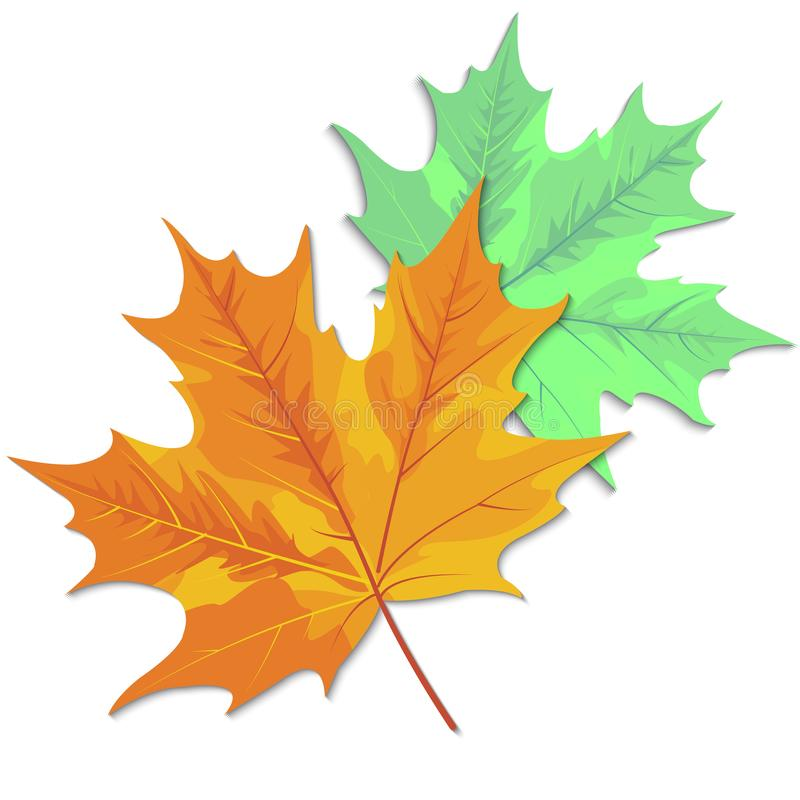 Листья осени клен, дуб, береза, каштан и другие заводы  иллюстрация штока