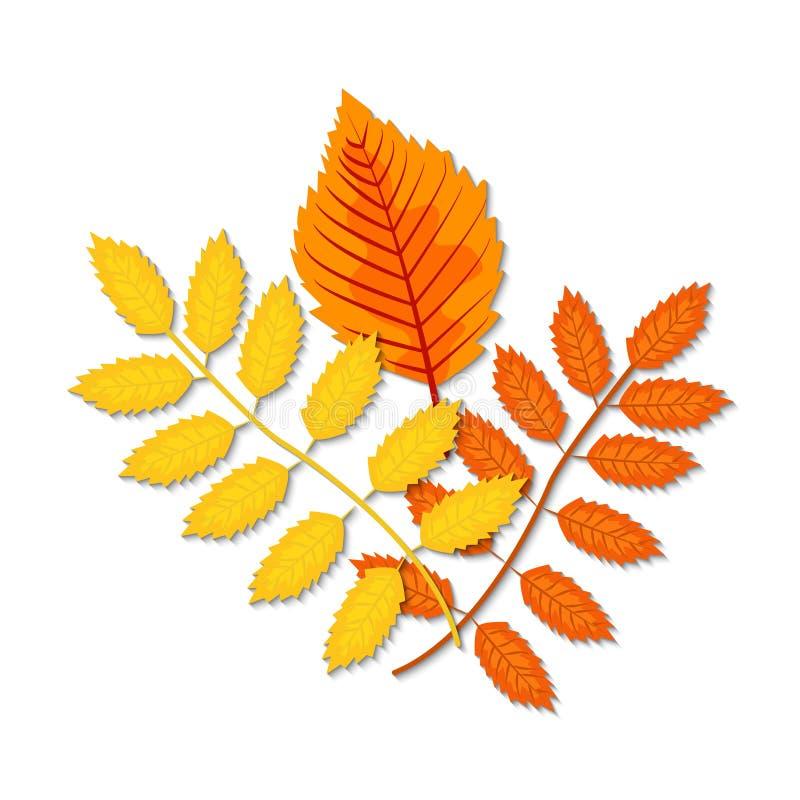Листья осени клен, дуб, береза, каштан и другие заводы  бесплатная иллюстрация