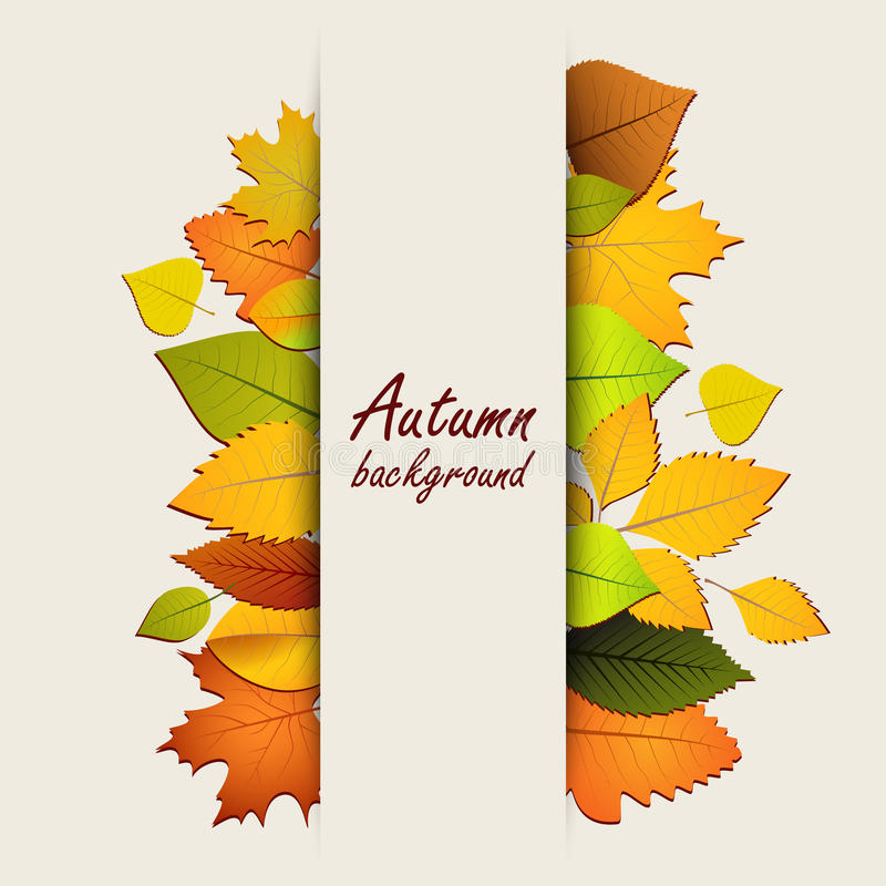 Листья осени на светлой предпосылке иллюстрация штока