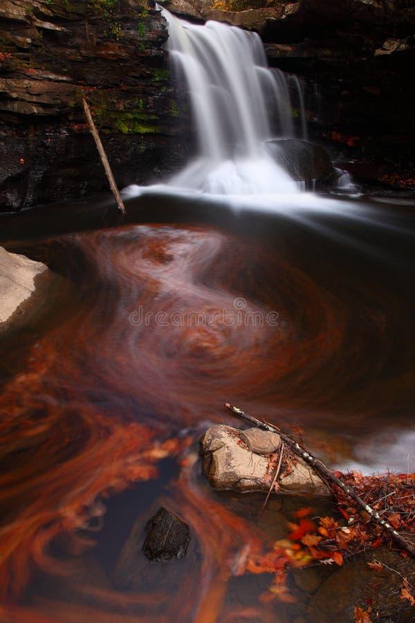 листья осени складывают водопад вместе стоковое фото