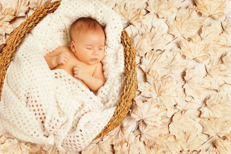 Листья осени сна младенца, ребенк новорожденного, Newborn уснувшее стоковое изображение rf