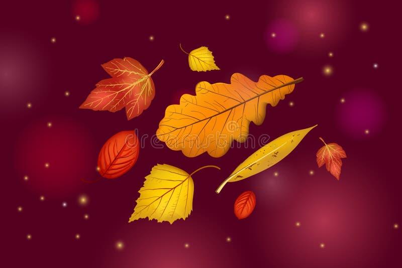 Листья осени установили изолированный на красивой предпосылке темного коричневого цвета с светами и sparkles иллюстрация вектора