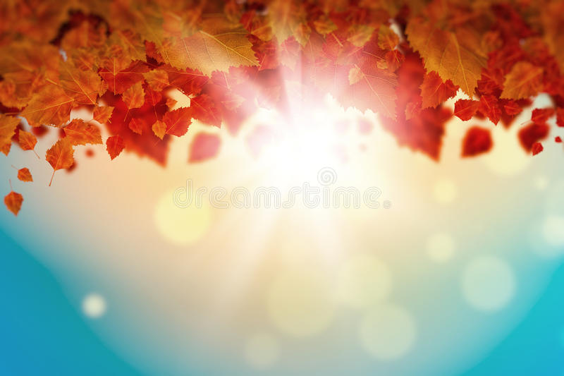 Download Листья осени стоковое изображение. изображение насчитывающей художничества - 41650107