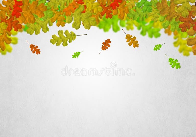 Download Листья осени стоковое фото. изображение насчитывающей украшение - 41651326
