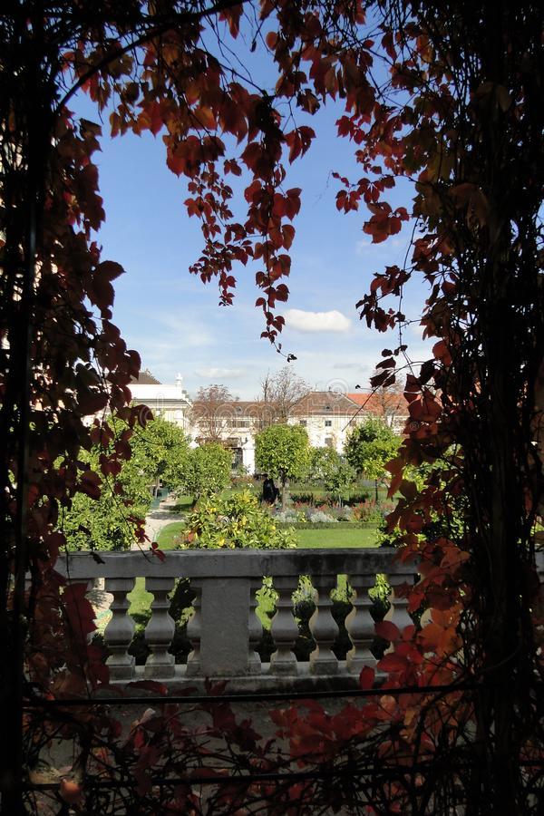 Листья осени Schonbrunn дворца на королевском саде стоковое изображение