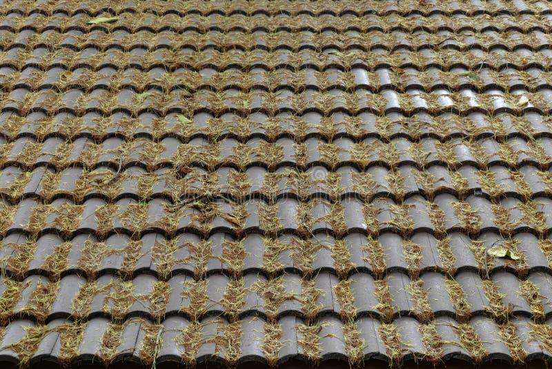 Листья падают на коричневую крышу дома стоковое фото