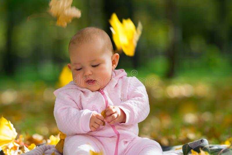 Листья падая над милым ребенком в парке стоковая фотография
