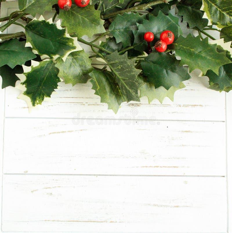 Download Листья падуба на белой деревянной предпосылке Стоковое Фото - изображение насчитывающей backhoe, вал: 81800864