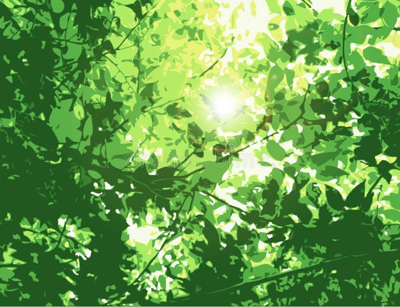 листья пирофакела иллюстрация вектора