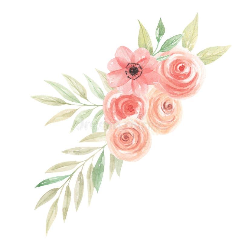 Листья расположения букета персика цветков акварели флористическим покрашенные кораллом иллюстрация штока