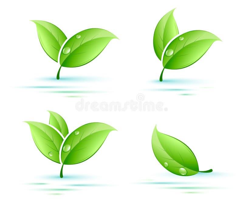 листья установили иллюстрация вектора