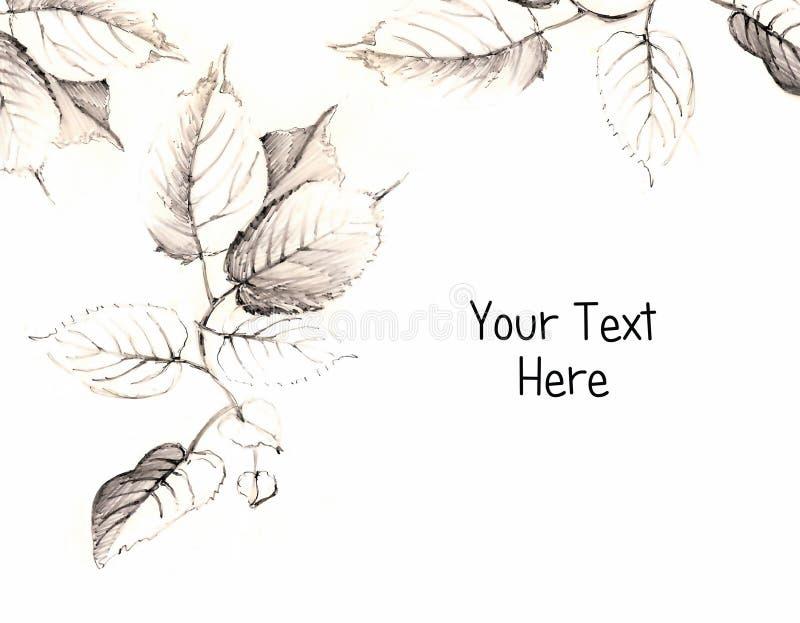 листья чертежа иллюстрация вектора