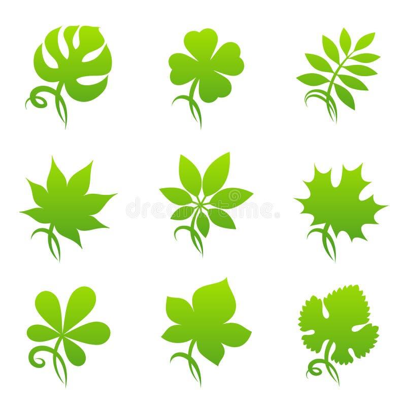 листья элементов конструкции иллюстрация штока