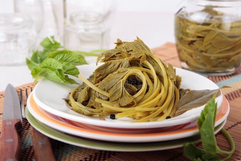 Листья goutweed, marinated с перцем и лист залива стоковые фото