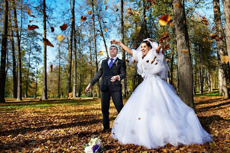 листья iand groom невесты падая радостные стоковое изображение