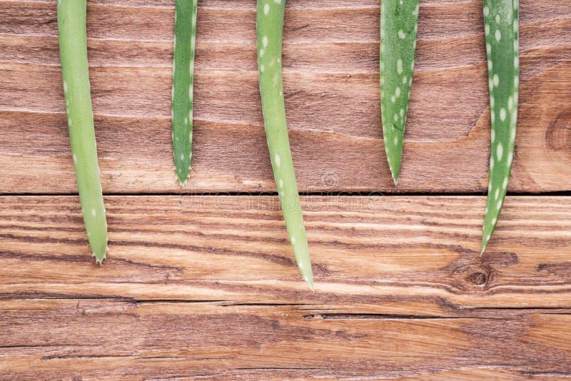Листья vera алоэ на деревянном столе стоковые изображения rf
