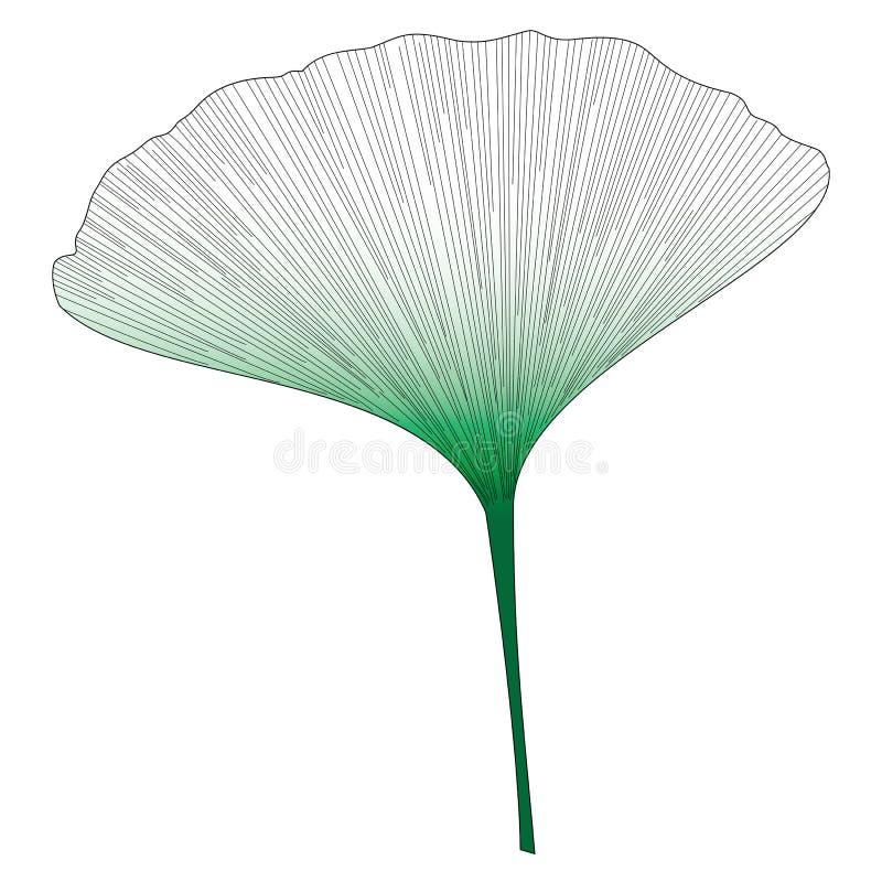Лист ботанической серии элегантные одиночные экзотические в стиле эскиза в черном и зеленом градиенте на белой предпосылке бесплатная иллюстрация