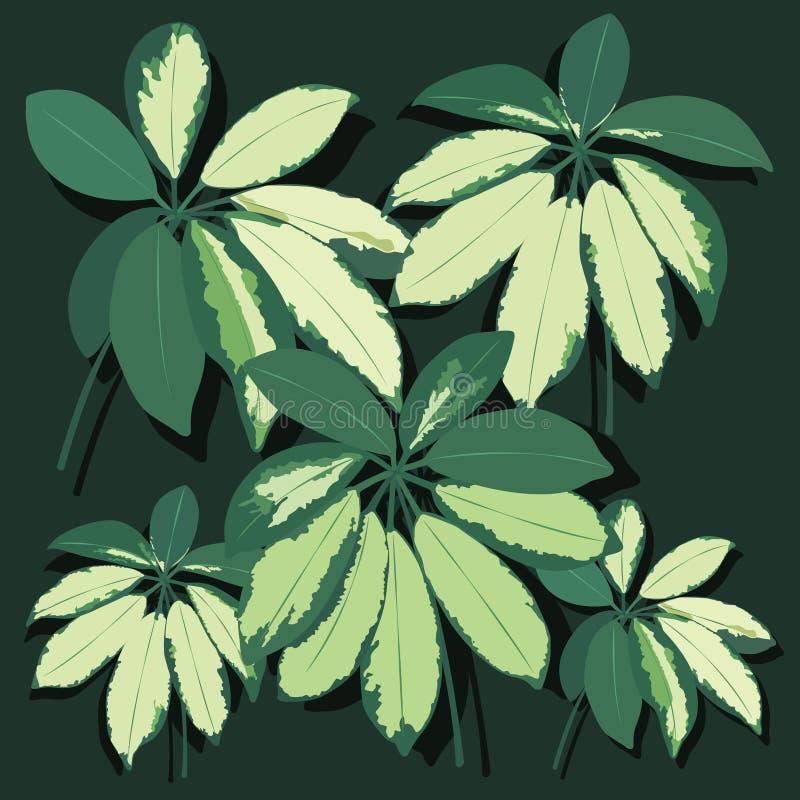 Лист вектора реалистические Тропические листья иллюстрация вектора