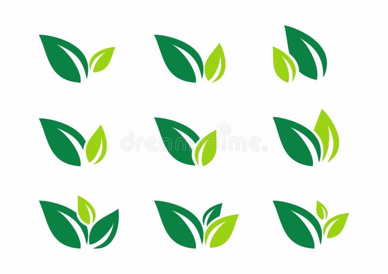 Лист, завод, логотип, экологичность, здоровье, зеленый цвет, листья, значок символа природы установили дизайнов вектора иллюстрация штока