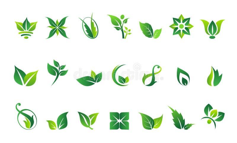 Лист, логотип, органический, здоровье, люди, завод, экологичность, набор значка дизайна природы иллюстрация вектора