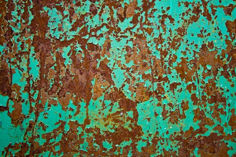 лист ржавчины утюга стоковые фотографии rf