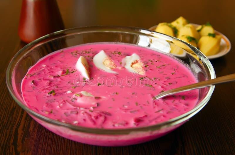 литовский суп традиционный стоковые изображения rf
