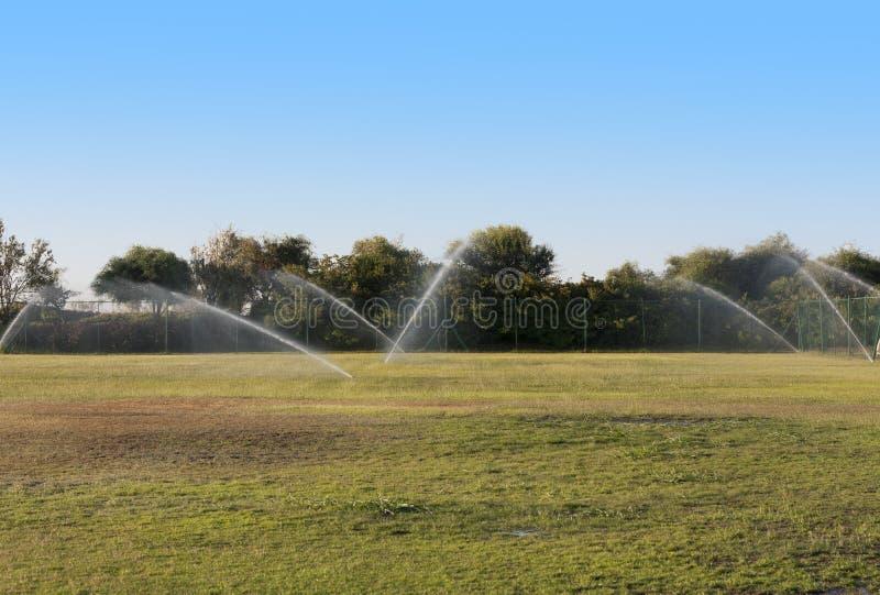 Лить вода зеленого ландшафта лужайки Влажное фото травы стоковые изображения