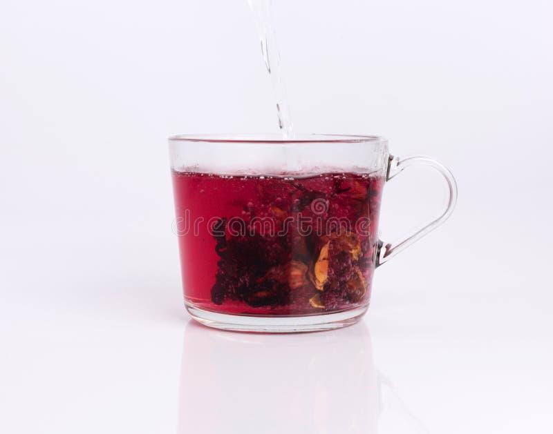 Лить горячая вода к стеклянной чашке с чаем гибискуса, изолированным на белизне стоковое фото rf